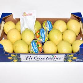 Limone primo fiore affilato calibro 3 categoria 1°, 3Kg