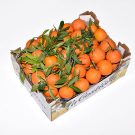 Clementine Foglie Italia calibro 2/3 categoria 1°