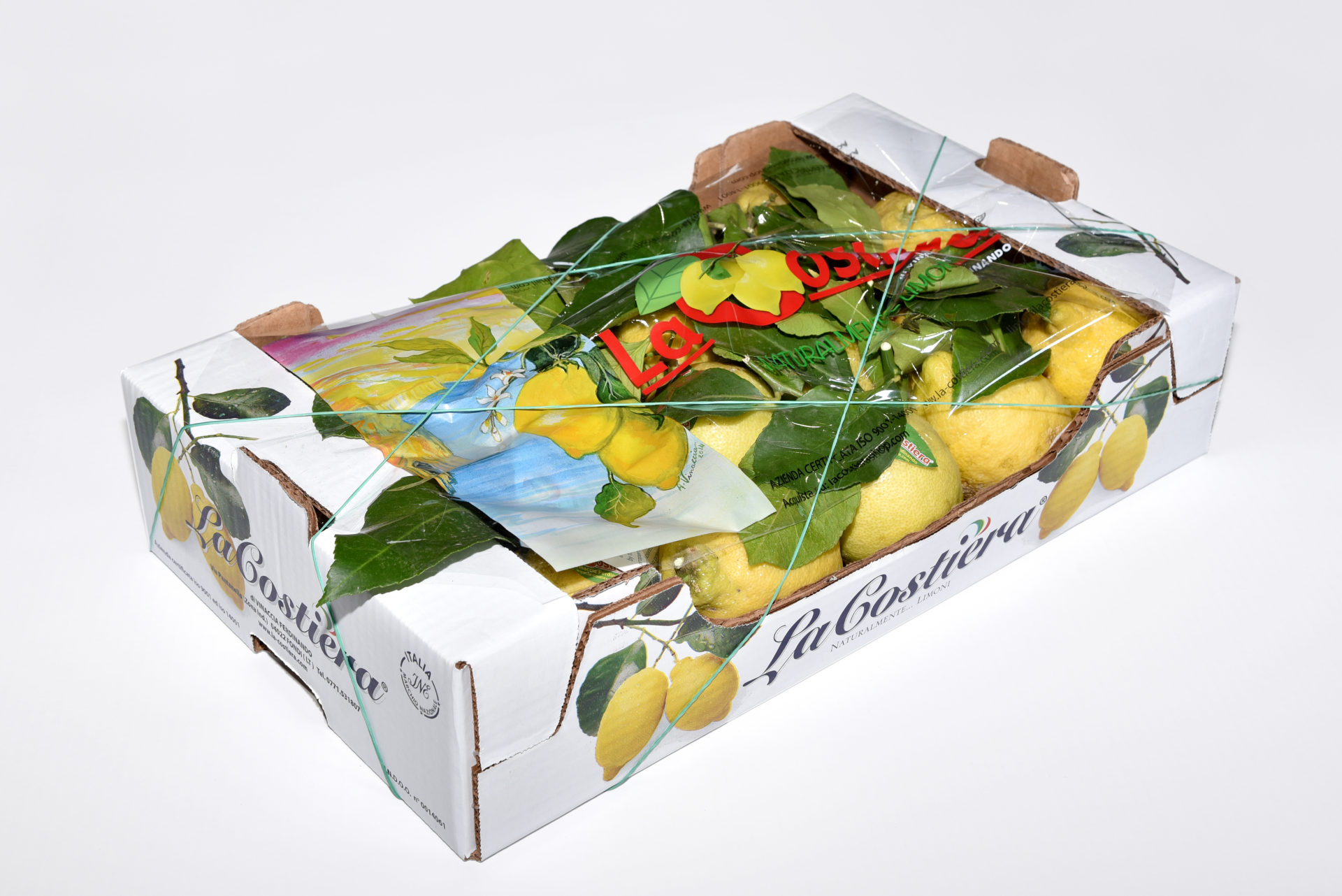 Lemon Primo Fiore with leaf caliber 3 category 1 5,5Kg