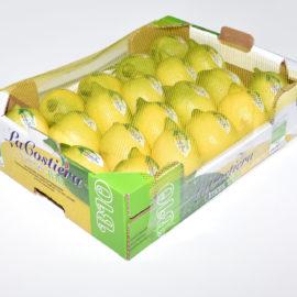 Limone BIO calibro 3 categoria 2° 4Kg