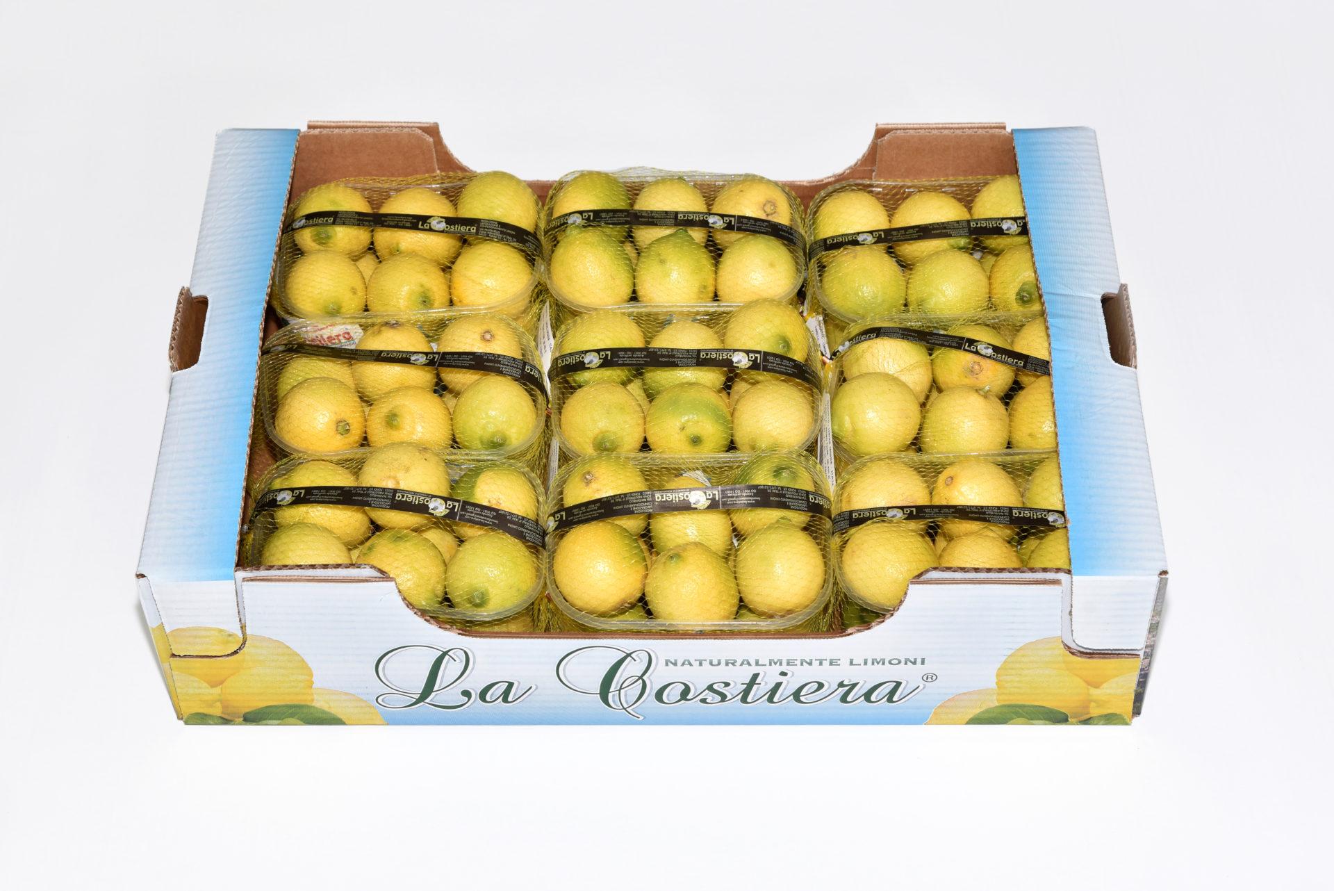 Limone primo fiore calibro 5 categoria 1° 9Kg